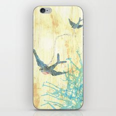 Birds of blue iPhone & iPod Skin