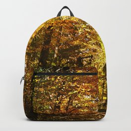 Woods Lake Trail Backpack