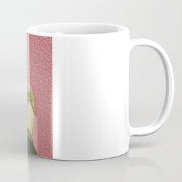 vintage pink & green Coffee Mug