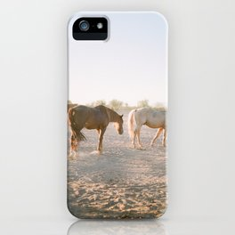 Relaxing at sunset iPhone Case