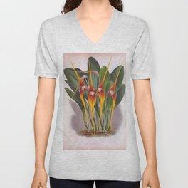 Masdevallia Macura Orange Vintage Long Stemmed Orchids Unisex V-Neck