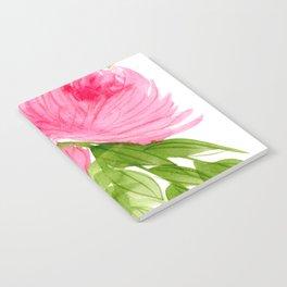 Pink Peonies in Watercolor Notebook