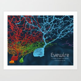 Eyewire Neurons Art Print