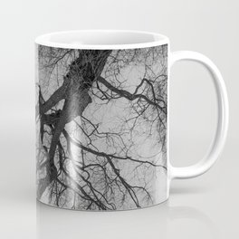 Lungs of the Earth | Nature Photography | Weeping Willow | Black and White | black-and-white | bw Coffee Mug