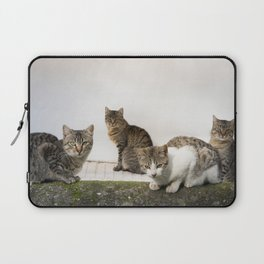 Picture of cats Laptop Sleeve