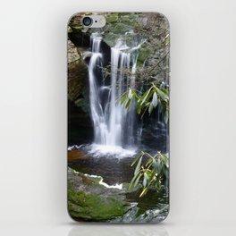 Elakala Falls iPhone Skin