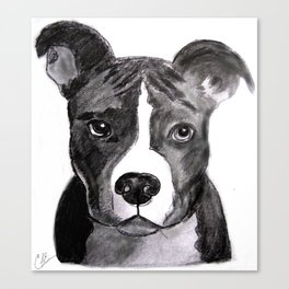 Pit Bull Dogs Lovers Canvas Print