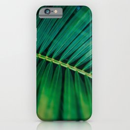 Green Leaf Palm Frond Photo iPhone Case