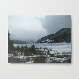 Cold Beauty 4 Metal Print