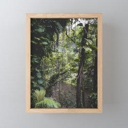 Hidden Jungle River Framed Mini Art Print
