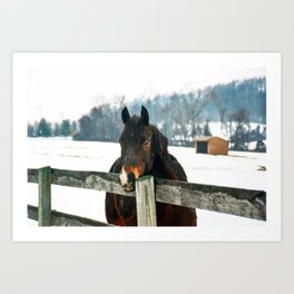 Thoughtful Horse Art Print
