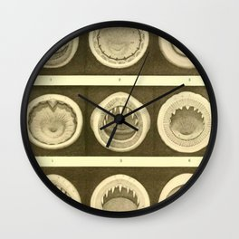 Vintage Cephalopod Mouths Wall Clock