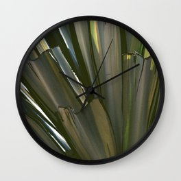 Fine Art Desert Plant in Dogtown Wall Clock