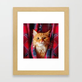 Cute and brash ginger cat in tartan shirt Framed Art Print