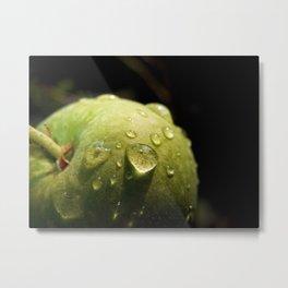 Morning Apple Dew Metal Print