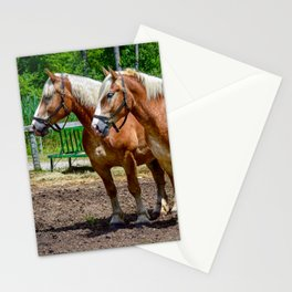 """""""Equine Duo"""" Stationery Cards"""