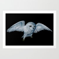 hedwig Art Prints featuring Hedwig by Ashley Lick