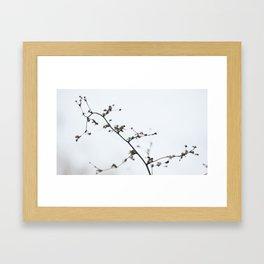 In The Dead of Winter Framed Art Print