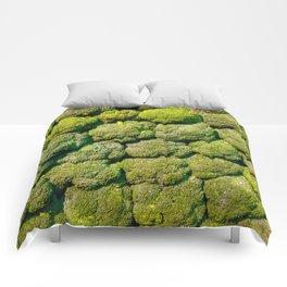 Broccoli Comforters