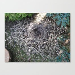 Magpie Nest Canvas Print