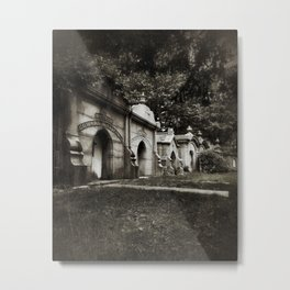 cryptic Metal Print