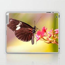 Rainbow Butterfly Laptop & iPad Skin