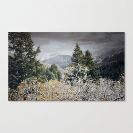 Cold Nights Canvas Print