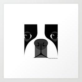 Boston Terrier Close Up Art Print