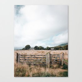 Wheat field in Scotland Canvas Print