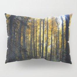 Shining Through Pillow Sham