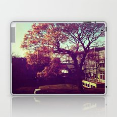 Autumn tree Laptop & iPad Skin