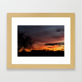 Sundown Birds Framed Art Print