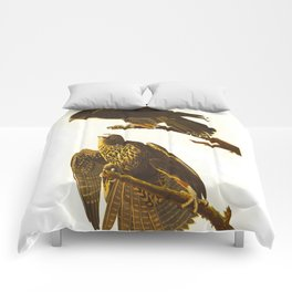 Labrador Falcon Comforters