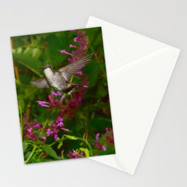 Hummingbird and pink agastache flower 44 Stationery Cards