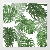 palms Canvas Prints featuring Monstera Deliciosa by Laura O'Connor