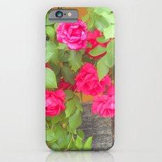 Tudor Rose iPhone 6s Slim Case