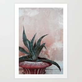 Pink Blue Cactus Art Print