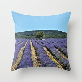 Lavender field, Provence, France Throw Pillow