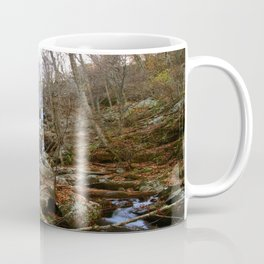 Shenandoah Waterfall II Coffee Mug