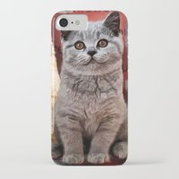 british flag iPhone & iPod Cases featuring British Shorthair by Selina Morgan