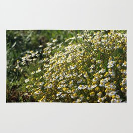 Field of daisies Rug