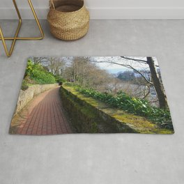 Road By The River Dee Rug
