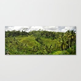 Bali Rice Fields Canvas Print