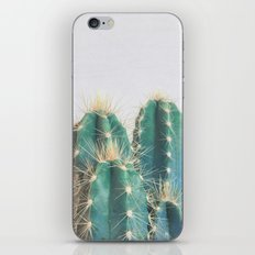 Cactus II iPhone & iPod Skin