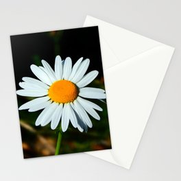 Simple Single Daisy Stationery Cards