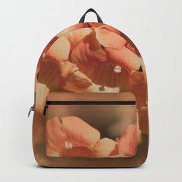 Softly Peach Backpack