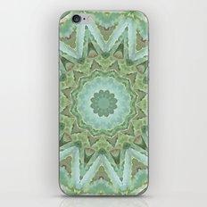 Kaleidoscope of Cacti iPhone & iPod Skin