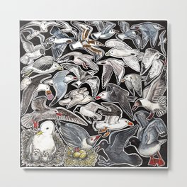 Sea gulls for bird lovers Metal Print