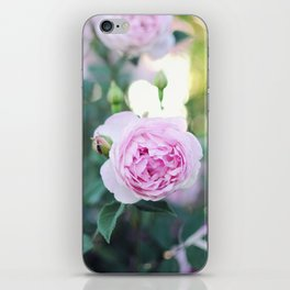 Magic Hour Roses iPhone Skin