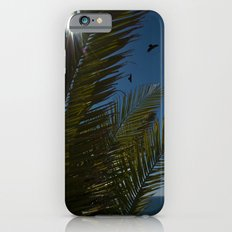 Sunny palms Slim Case iPhone 6s
